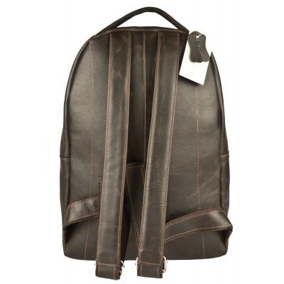 Кожаный рюкзак мужской Carlo Gattini Briotti brown (арт. 3079-04)